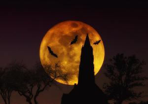 halloween-moon-bill-cannon